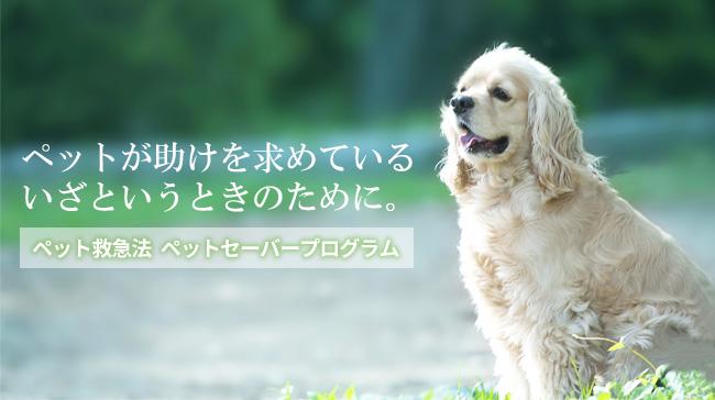 ペット救急法「ペットセーバープログラム」のご紹介
